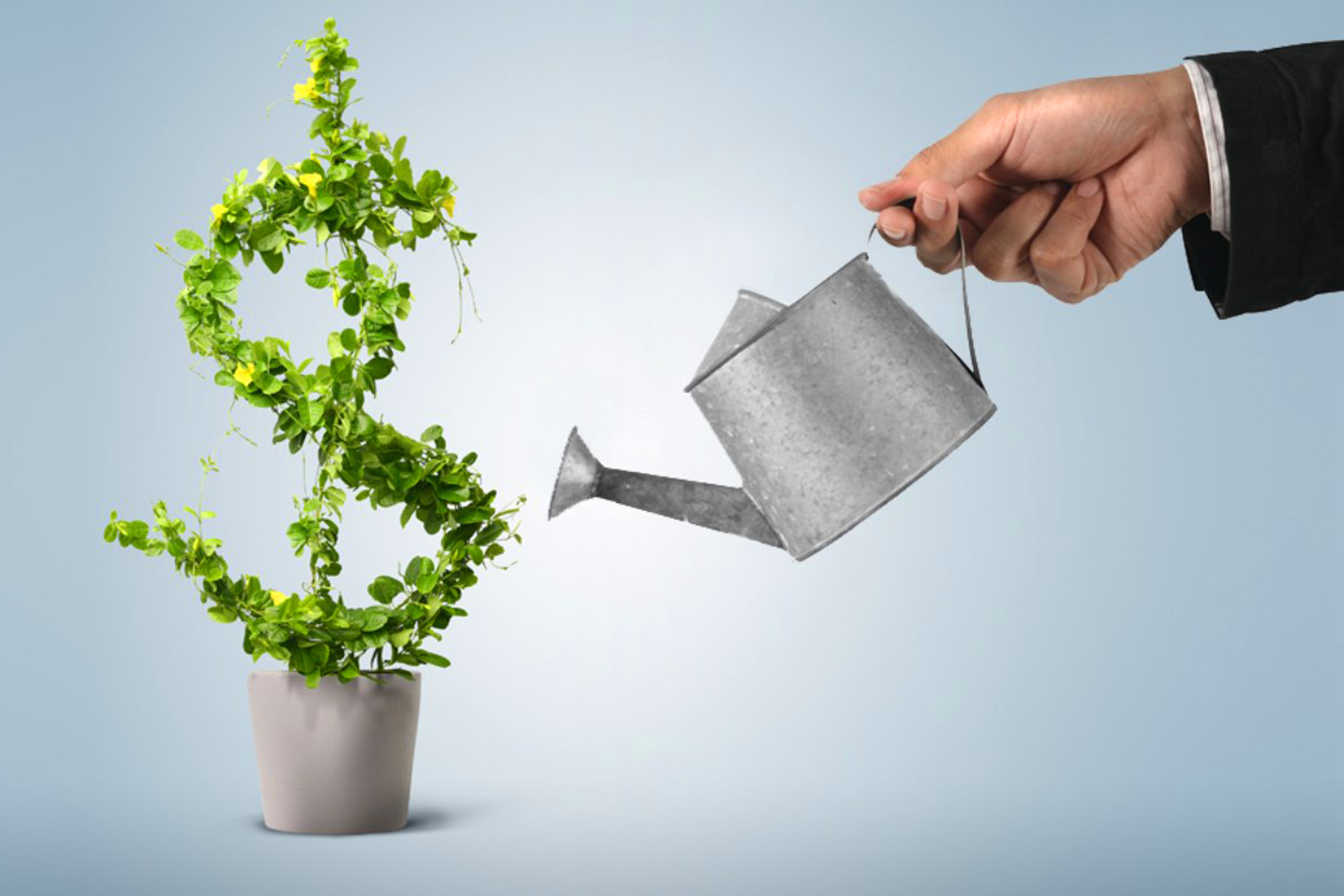 Here Are Nine 9 Tips For Growing a Successful Business